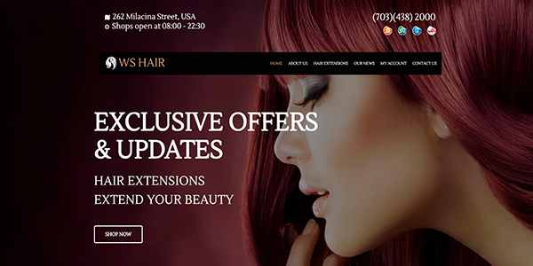 WS Hair - шаблон для салона на WordPress